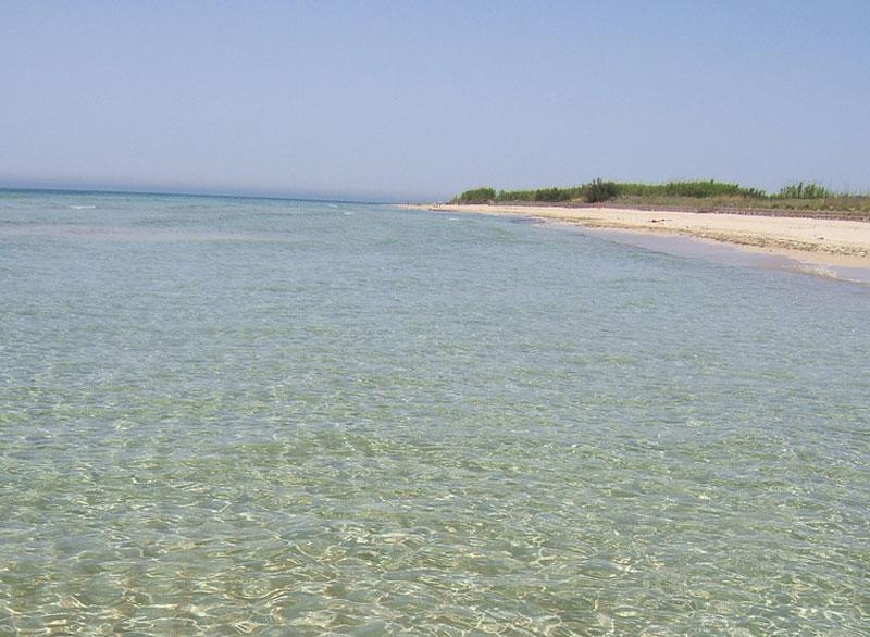 Spiagge e Lidi